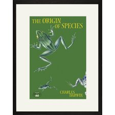 The Origin of Species Framed Graphic Art
