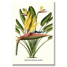'Yellow Bird of Paradise Mandela's Gold' Graphic Art on Canvas