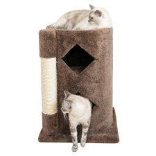Cat Scratch Post & 2 Story Cave