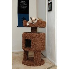 Contemporary Cat House
