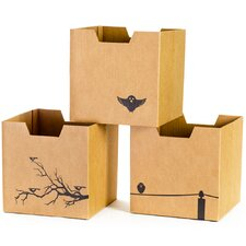 Cardboard Bird Cubby Bins (Set of 3)