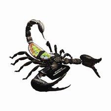 4D Vision Scorpion Anatomy Model