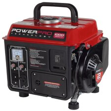 2-Stroke 1000-Watt Oil/Gas Portable Generator