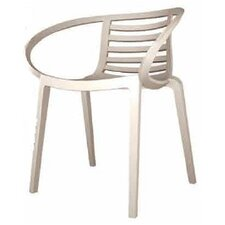 Mambo Arm Chair