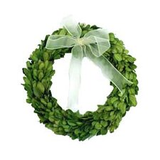 "Boxwood 8"" Wreath Round with Ribbon"