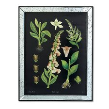 Botanicals Wall Art (Set of 2)