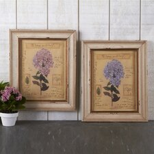Botanical Vintage Hydrangea Wall Art Print (Set of 2)
