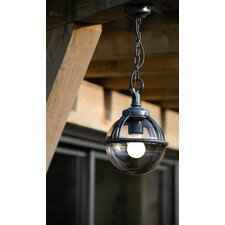 Boreal 1 1 Light Hanging Lantern