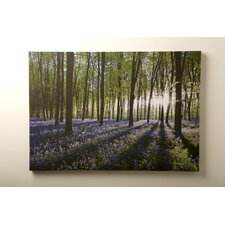 Bluebell Landscape Wall Art