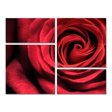 Romantic Rose Modern Wall Art Decoration