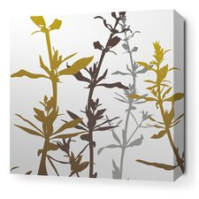 Morning Glory Wildflower Stretched Graphic Art on Canvas in Silver and Olive