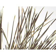 <strong>Inhabit</strong> Botanicals Thatch Slat Wall Hanging