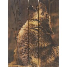 Crying Wolf Photographic Print