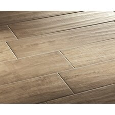 "Vivaldi 24.25"" x 3.25"" Glazed Bullnose Tile Trim in Spring"