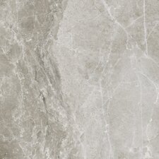 "Emperor 11-3/4"" x 11-3/4"" Glazed Porcelain Field Tile in Alexander"