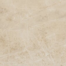 "Emperor 17-13/20"" x 17-13/20"" Glazed Porcelain Field Tile in Caesar"