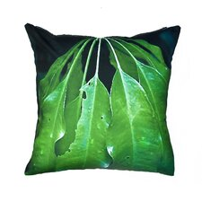 Luscious Outdoor Pillow