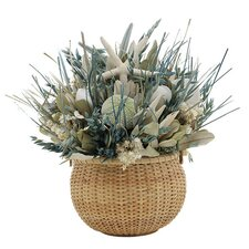 <strong>Urban Florals</strong> Summer St. Martin Desk Top Plant in Basket