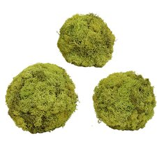 Spring / Everyday Urban Moss 3 Piece Wreath Set