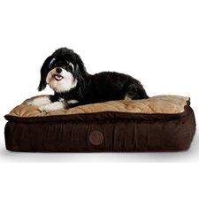 Dog Feather-Top Ortho Bed
