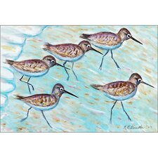 Coastal Sandpipers Door Mat