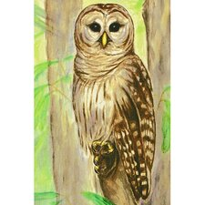 <strong>Betsy Drake Interiors</strong> Garden Owl Outdoor Wall Hanging