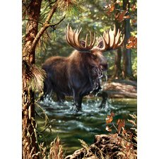 Moose Crossing Puzzle