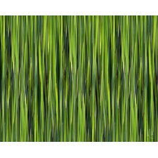 Nature Blades by Jordan Carlyle Graphic Art