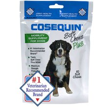 Soft Chews Plus MSM for Dog (60 Count)