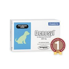 <strong>Denosyl</strong> Medium Dog Health Care (30 Counts)