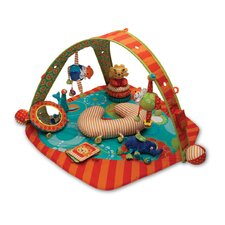 Flying Circus Play Gym