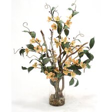 Waterlook Silk Dogwood with Branches in Tall Cylinder Vase