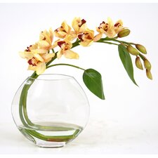 <strong>Distinctive Designs</strong> Silk Orchid Spray in Glass Disk Vase