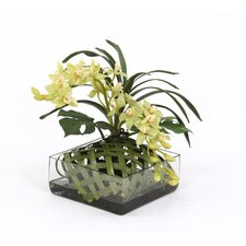 Silk Orchids in Square Glass Tray