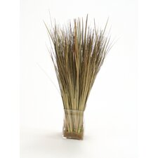 Silk Arrangement Grass in Square Glass Decorative Vase