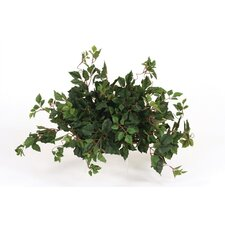 Topper Silk Kangaroo Ivy on Tile Floor Plant in Planter (Set of 4)