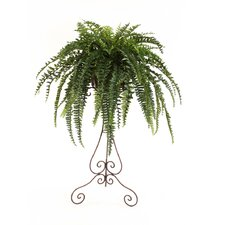 Silk Boston Fern in Victorian Plant Stand