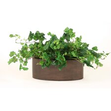 Silk Geranium Foliage in Oval Planter (Set of 2)