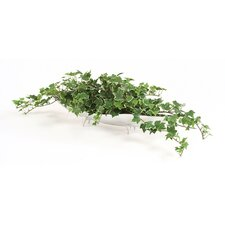 <strong>Distinctive Designs</strong> Miniature Silk Holland Ivy Floor Plant in Planter