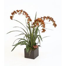 <strong>Distinctive Designs</strong> Silk Dendrobium Orchid in Box