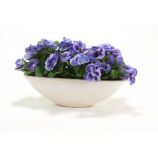 Pansies in Small Oval Stoneware Planter