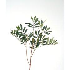 DIY Foliage Artificial Olive Leaf Spray (Set of 12)