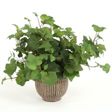 Silk Hedera Ivy in Small Metal Planter (Set of 3)