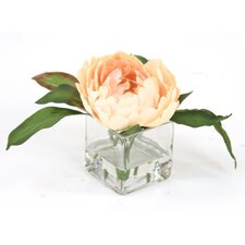 Waterlook Peach Peony in Vase (Set of 3)