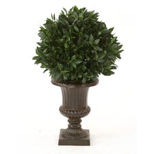 <strong>Distinctive Designs</strong> Sweet Bay Single Ball Floor Plant in Urn