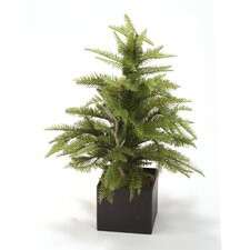 <strong>Distinctive Designs</strong> Silk Fir Floor Tree in Box