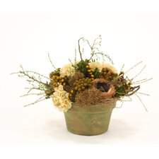 Dried Greenery Rustic Bird's Nest Mix Wreathed with Honeysuckle Vines in Garden Pot