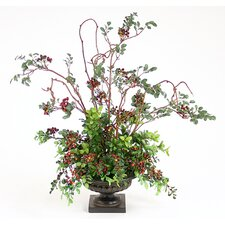<strong>Distinctive Designs</strong> Silk Pittosporum, Berries and Kiwi Vines in Compote Urn