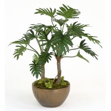 Silk Philodendron Selloum Floor Plant in Pot