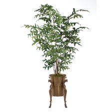 "84"" Fishtail Palm Tree in Ram's Head Plant Stand with Container"